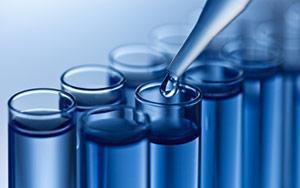 Polyclonal antibody services - custom antibody development